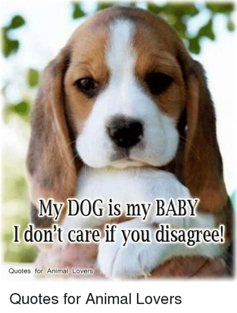 Dog Lover Meme - 25 best memes about animal lover animal lover memes