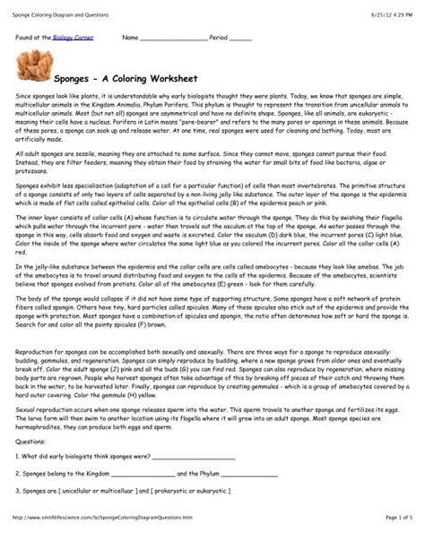 sponges  coloring worksheet zsksydny coloring pages