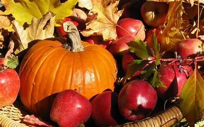 Harvest Fall Wallpapers Autumn Apples Pumpkin Mac