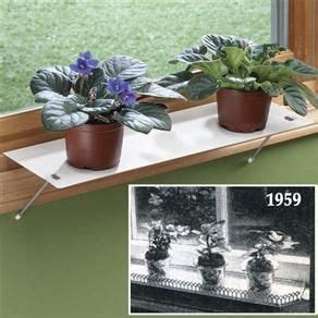 Window Sill Plant Holder by Window Sill Extender For My Home Window Plants Indoor