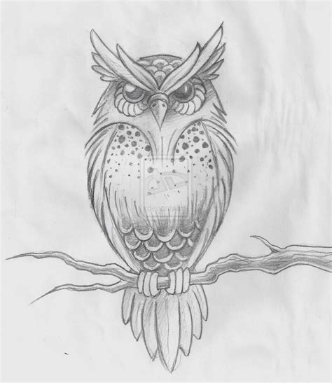 owl sketch by ~hold back the day on deviantART We Heart