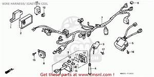Honda Nx650 Dominator 1991  M  Germany Wire Harness