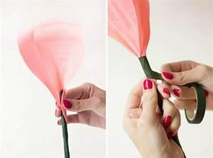 Comment Faire Des Roses En Papier : fabrication d 39 une rose en papier crepon papier crepon creation pinterest rose en papier ~ Melissatoandfro.com Idées de Décoration