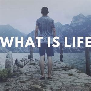 What, Is, Life, Wil