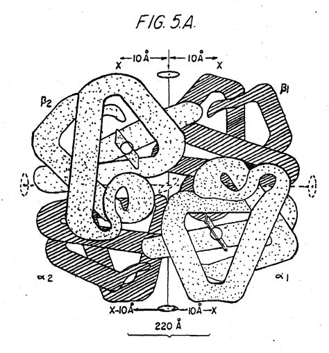 patent epa verfahren und anwendung von multimere