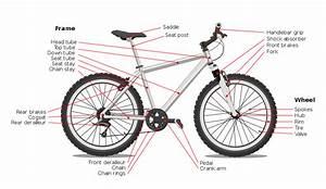 File Bicycle Diagram-en  Edit  Svg