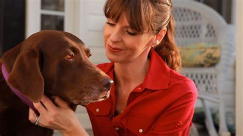 dog training  positive reinforcement teachers pet