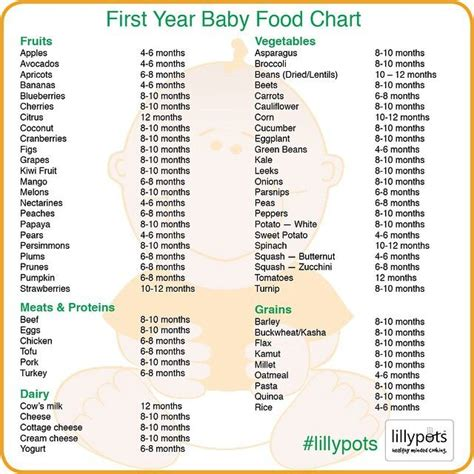 ideas  baby  foods  pinterest  foods  baby feeding baby solids