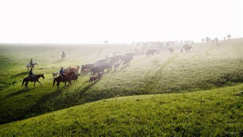 kansas   visit   open plains