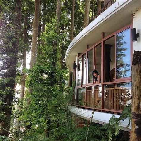 beautiful rainforest hotels  bogor puncak