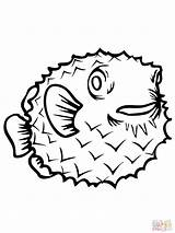 Coloring Fish Porcupine Pages Puffer Printable Clipart Clipartbest Supercoloring Disney sketch template