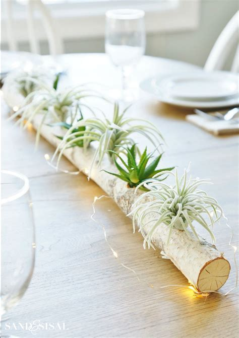 Birch Log Centerpiece with Air Plants and Succulents