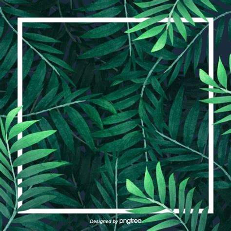 green fresh tropical palm leaf frame background