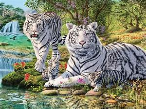 Animals White Tiger And Two Cubs Jungle Waterfall Art