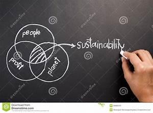 Sustainability Stock Photo
