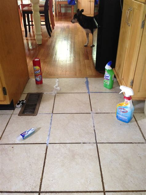 i tried four methods to clean the grout on my kitchen