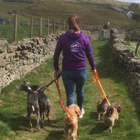 rossendale responsible animal rescue rrar home facebook
