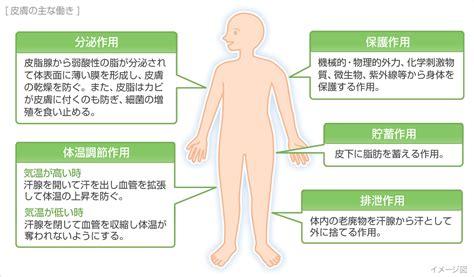 湿疹 と は