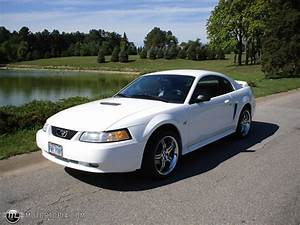 2000 Ford Mustang - Information And Photos