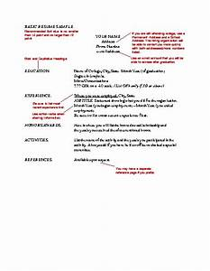 Zimbio Celebrity basic resume examples