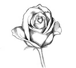 How to Draw Easy Rose Drawings