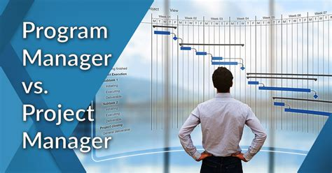 whats  difference  program manager  project