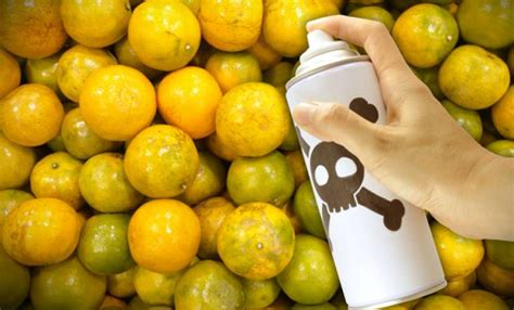 Toxic Chemicals Found In Health Foods, Vitamins, And