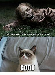 Zombie Grumpy Cat Meme