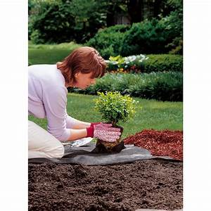 herbe castorama great ordinary aspirateur souffleur With ordinary photo jardin avec palmier 15 gazon synthetique artificiel gazon et jardin