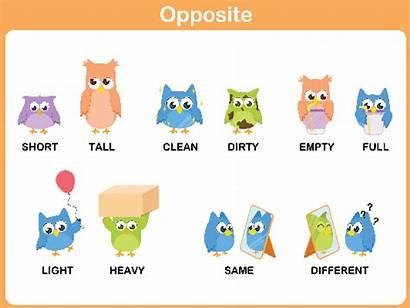 Opposite Clipart Preschool Word Words Verbs Building
