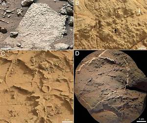 Martian lake was able to support life for thousands of ...