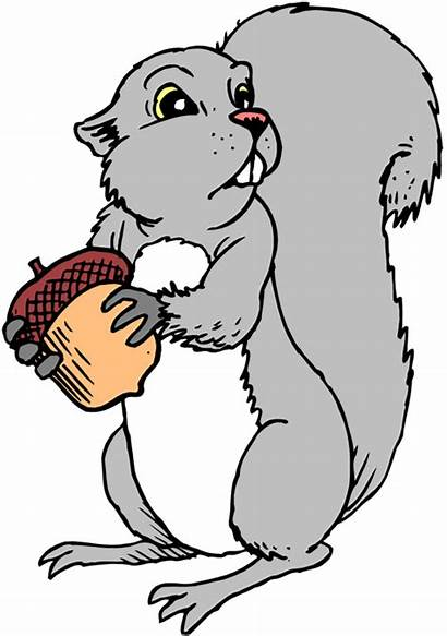 Squirrel Clipart Grey Clip Funny Cartoon Gray