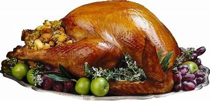 Turkey Chicken Cooked Fried Clipart Pngimg