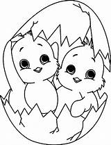 Coloring Chick Twin Play sketch template