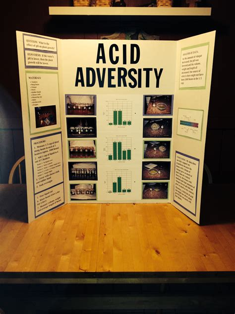 Example Of A Successful Mung Bean Science Fair Project