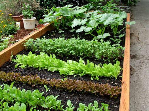 green thumb gardening series spring vegetable gardening