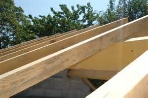 Clou De Charpente : la charpente de mon abri de jardin construction d 39 un ~ Edinachiropracticcenter.com Idées de Décoration