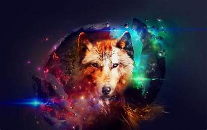 Wolf Galaxy Wallpapers Backgrounds Wallpaperaccess