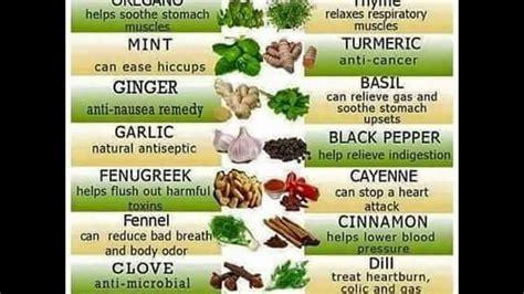 dr cuisine dr sebi alkaline food chart alkaline food chart and 3