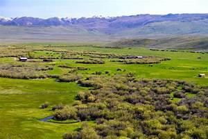 Wyoming Bill Fandel