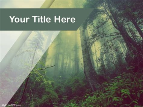rain forest  template   powerpoint