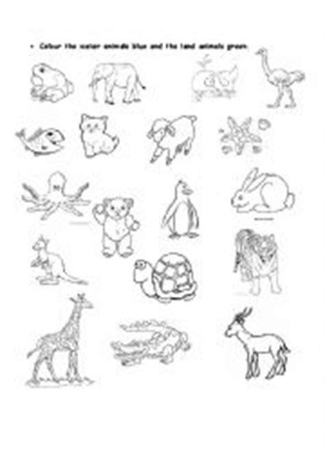 land and water animals worksheet www pixshark