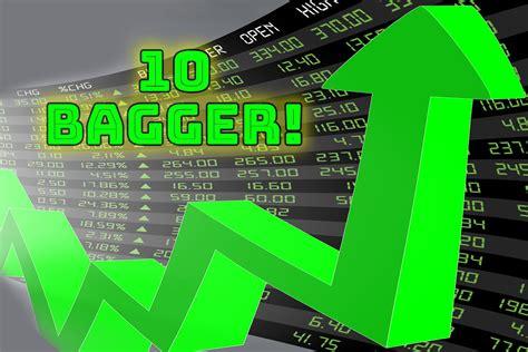 high risk high return  bagger stock