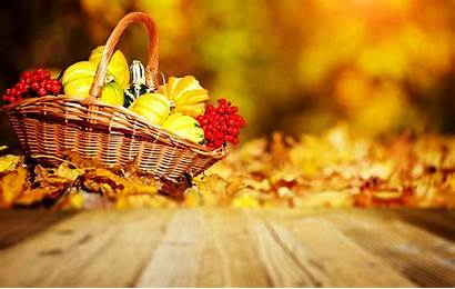 Harvest Fall Autumn Background Wallpapers Celebration Resolution