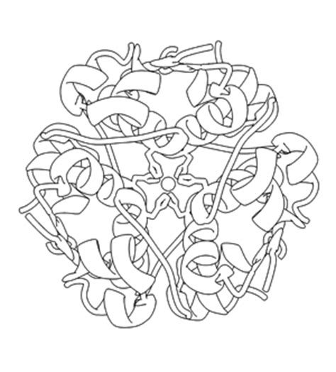 biology coloring book pdb 101 learn coloring books discovering biology