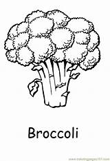 Coloring Vegetables Vegetable Pages Broccoli Printable Food Clipart Print Fruit Printabel Sheets Fruits Nature Easy Coloringpages101 Freekidscoloringpage Colouring Adults Brocolli sketch template