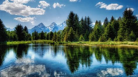 Free download nature hd wallpapers nature hd wallpapers ...