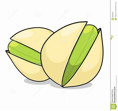 Pistachios Clipart Pistachio Illustration Nuts Drawing Clipground