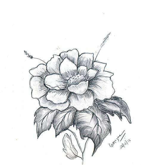 flower drawing pencil drawing pinterest flower