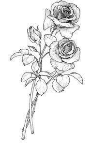 136 best Roses to Color images on Pinterest | Coloring